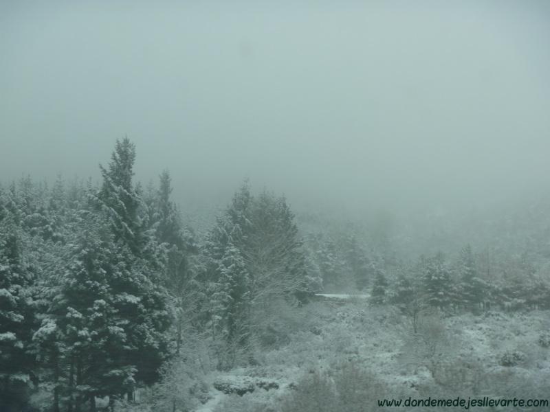 La nieve, vista desde el coche, a la altura de Somosierra