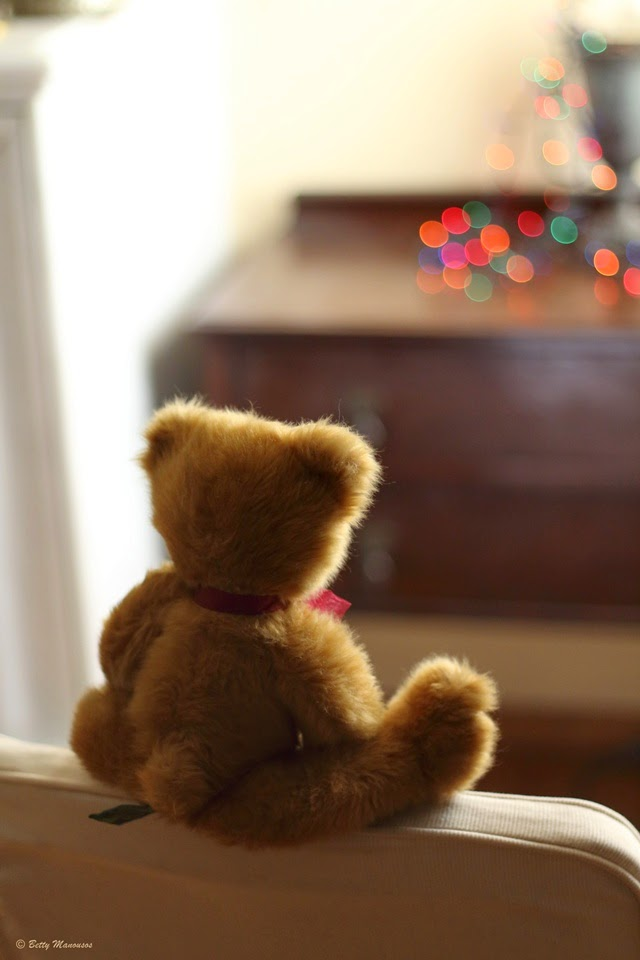 christmas lights and teddy bear