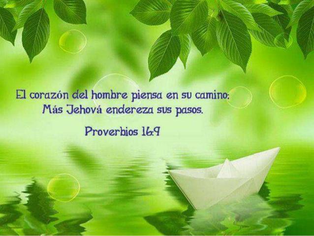 Prov. 16:9