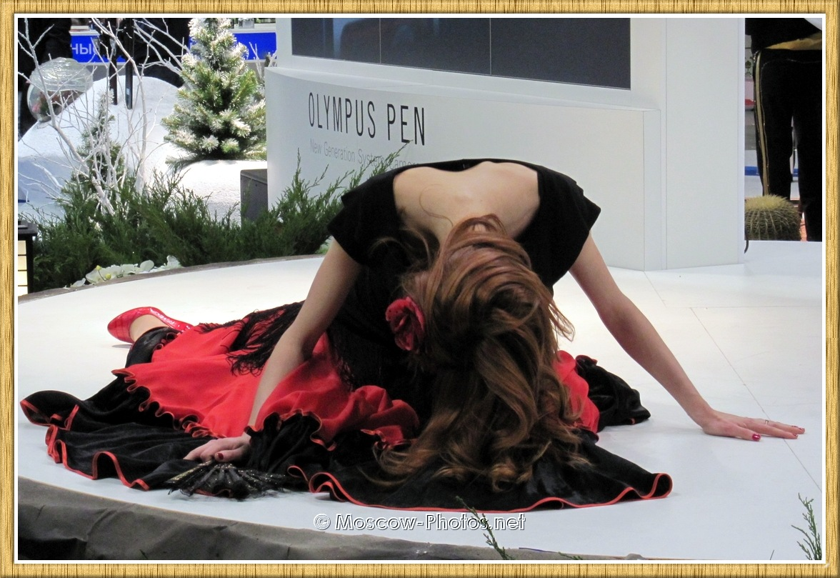 Long-haired girl in ball gown at Photoforum 2011
