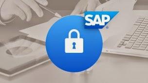Seguridad en SAP