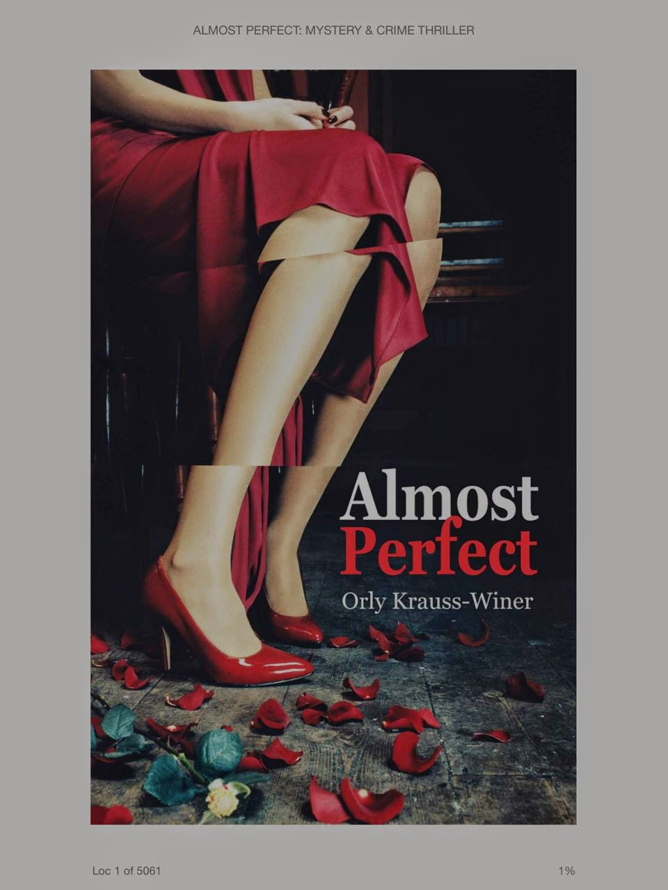 Almost-Perfect-by-Orlly-Krauss-Winer