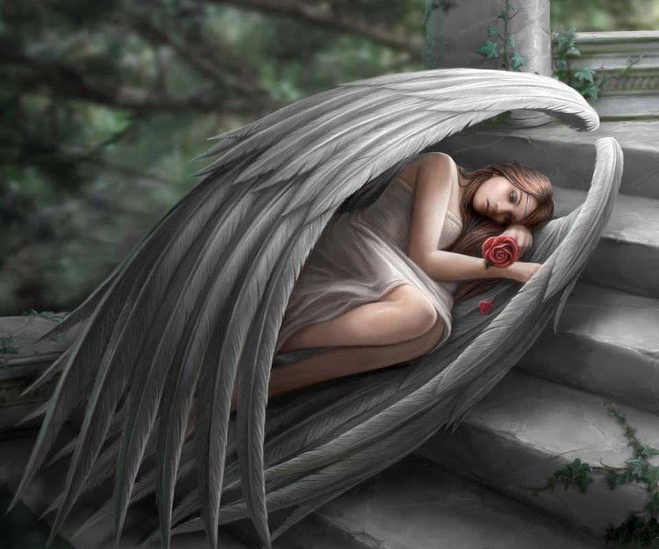 angel of fantasy lamour escort
