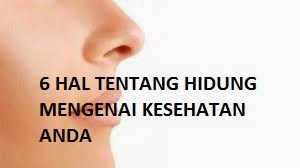 hidung sehat