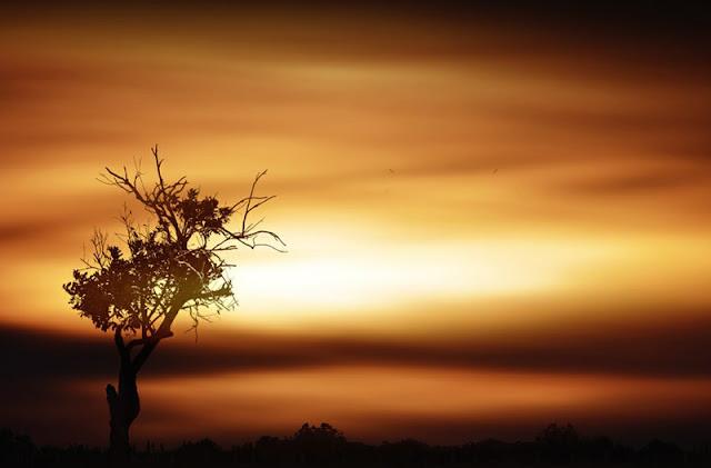 وراء الشمس صورا غاية الإبداع
