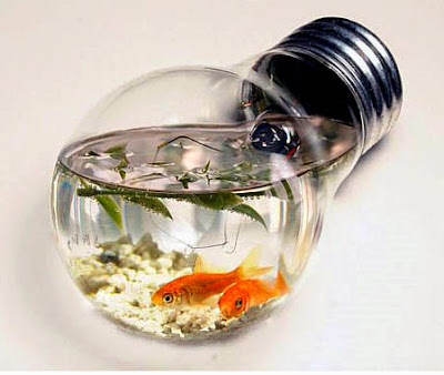 Cool betta fish tanks easy make origami instructions for for Cool fish tanks