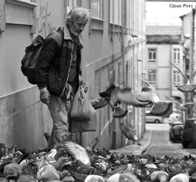Why old man feeds pigeons ?