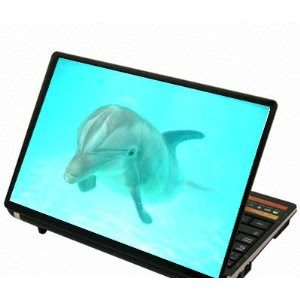 Review Dolphin Laptop Skins