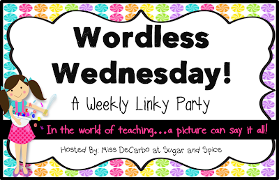 http://secondgradesugarandspice.blogspot.com/2014/08/wordless-wednesday-august-13th.html