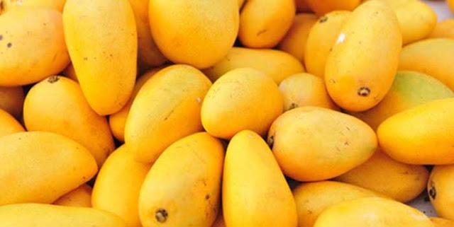 Mango Festival 2015