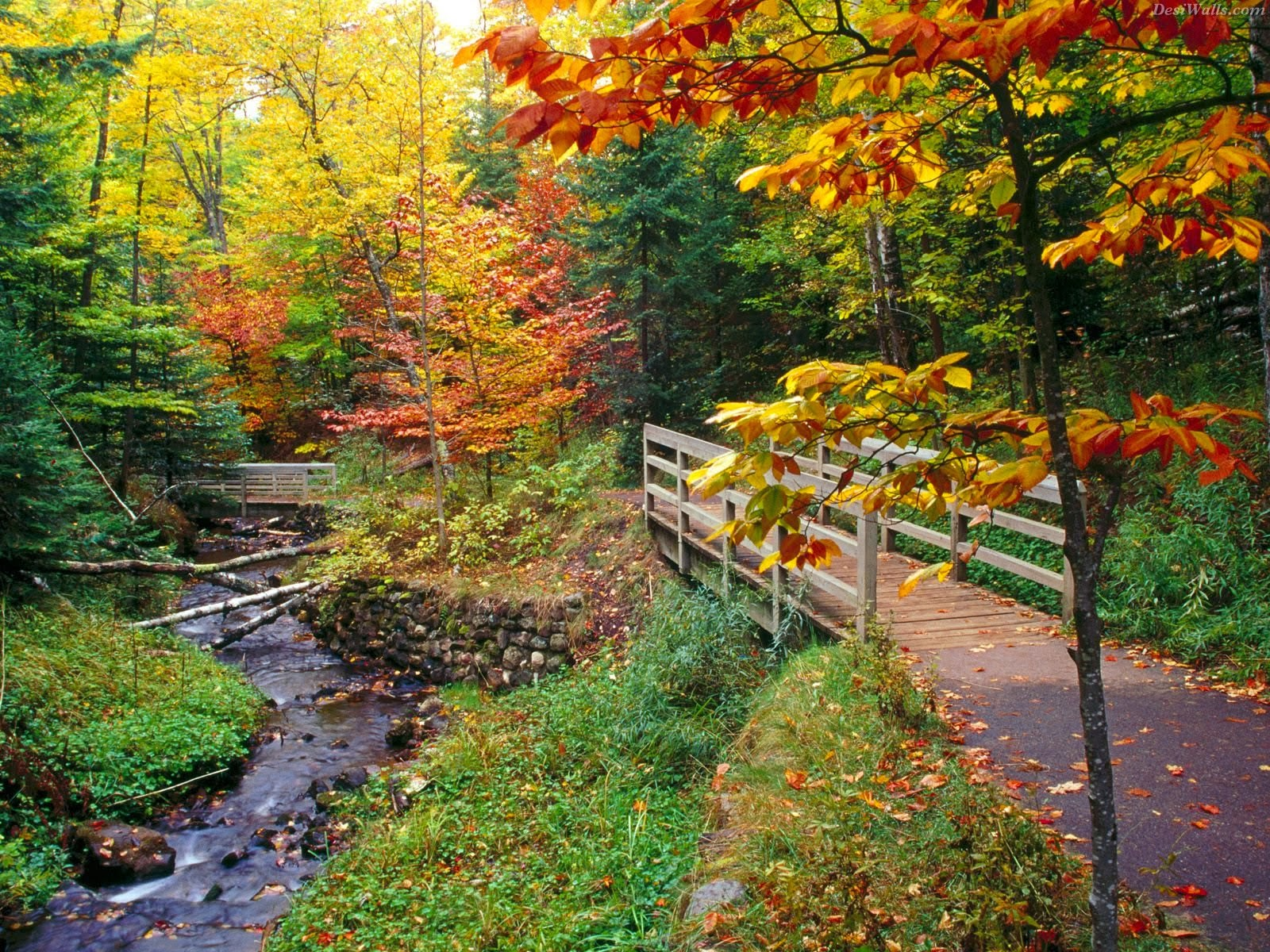 Life Is Wonderful Autumn One Of The Best Seasons