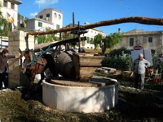 Серра де Трамунтана, Балеарские острова, Испания, оливки