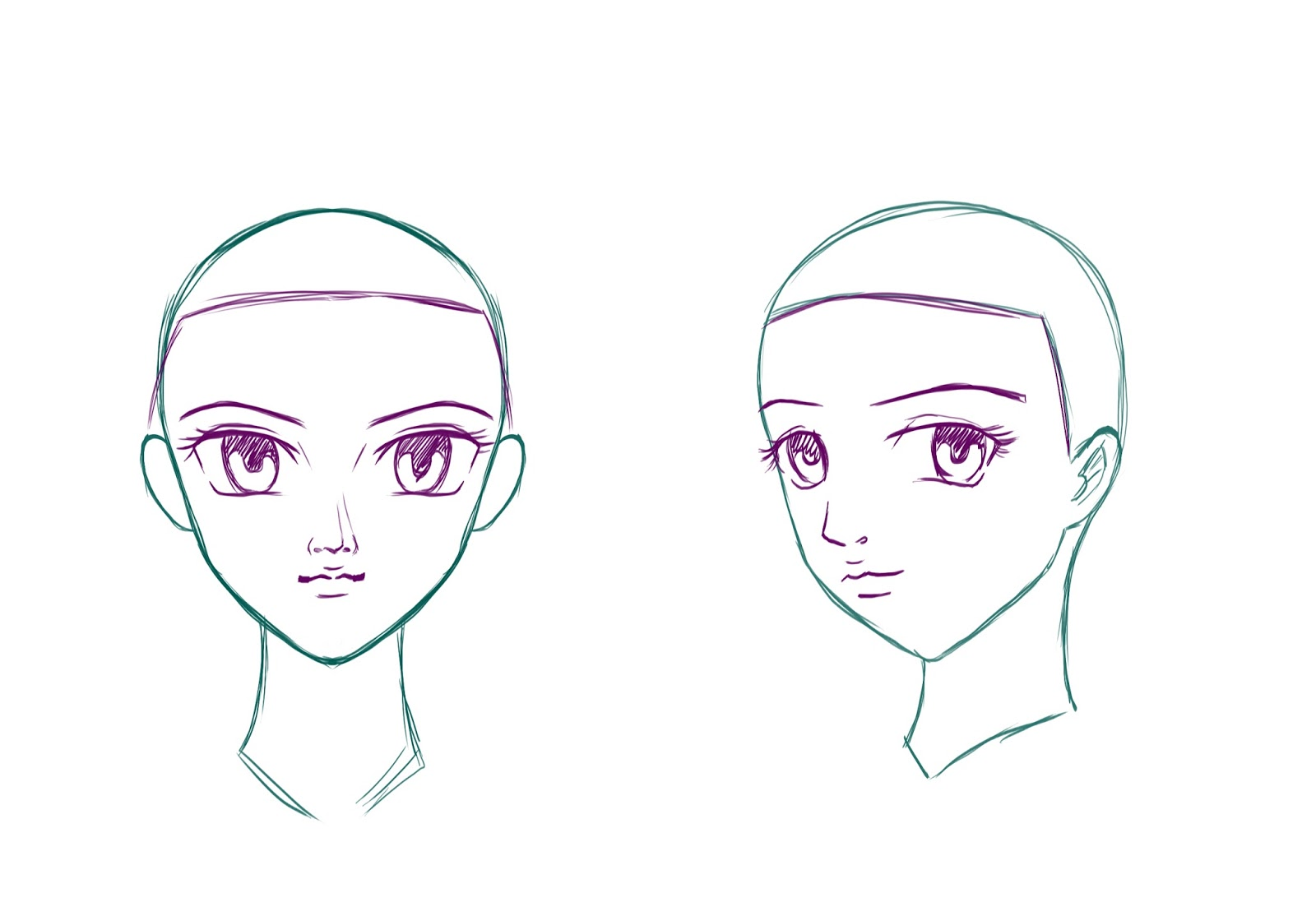 How To Draw A Hair Of Animã© With Steps