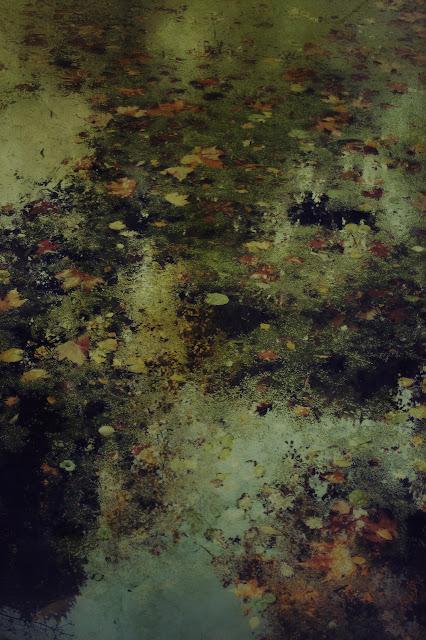 landscape art pictorialism art Ophelia