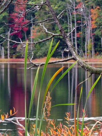 Pebawma Lake