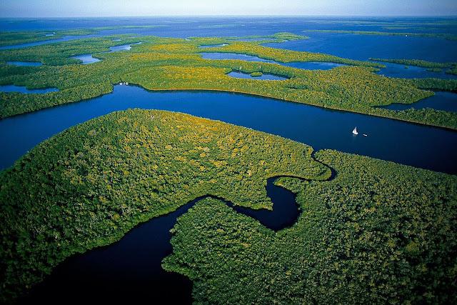 Everglades Florida Miami