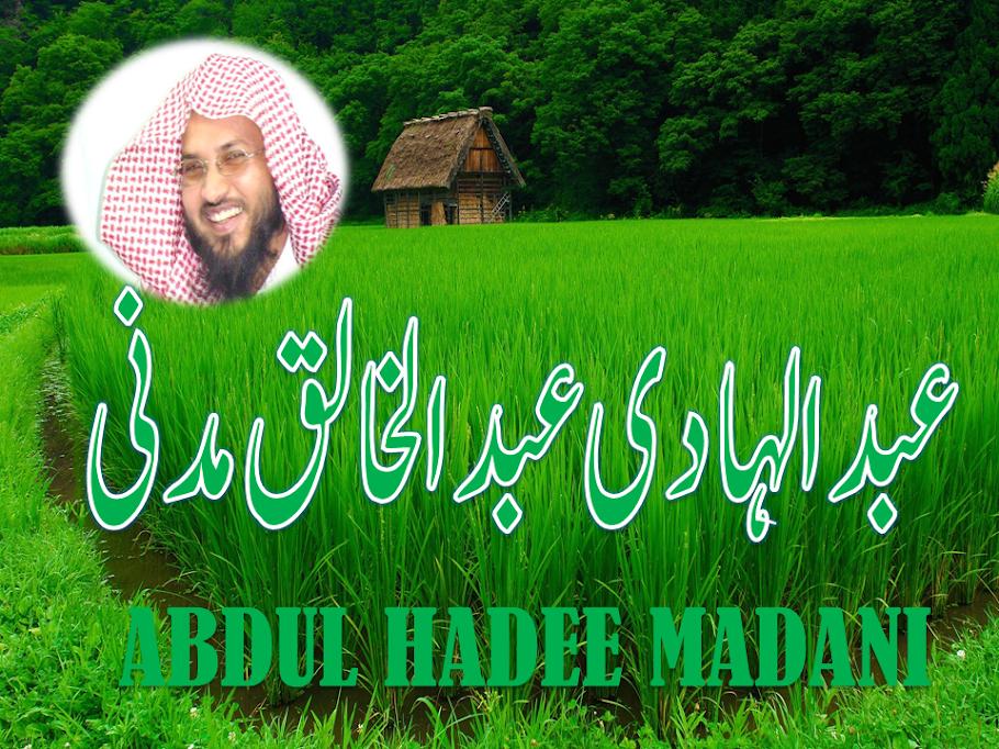 abdulhadee madani