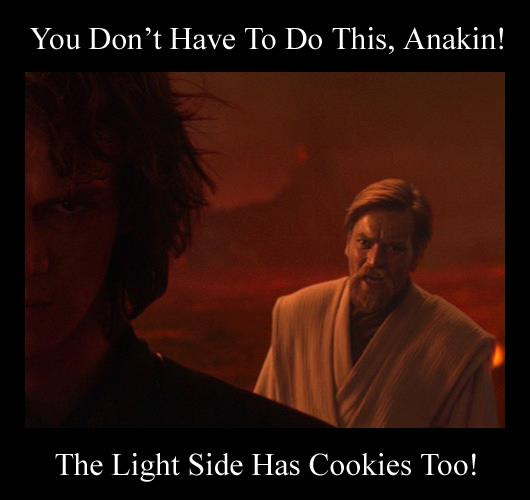 """""""YOU WERE THE CHOSEN ONE!"""" 