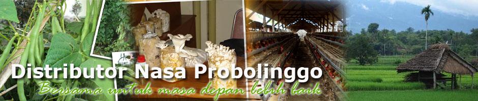 Distributor Nasa Probolinggo