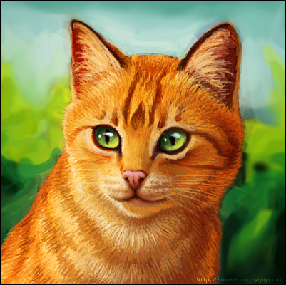 Warrior Cats Pictures on Pippen S Warrior Cat Blog    Winter Issue  Cat Focus  Firestar
