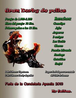 blogspot.com/2013/01/derby-de-gallos-apaxtla-2013.html