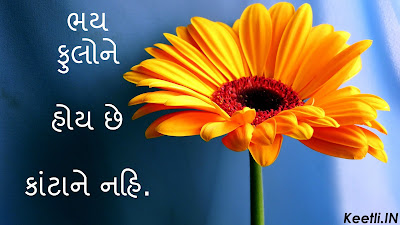 Gujarati Suvichar Quotes