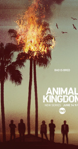 Animal Kingdom US Season 2