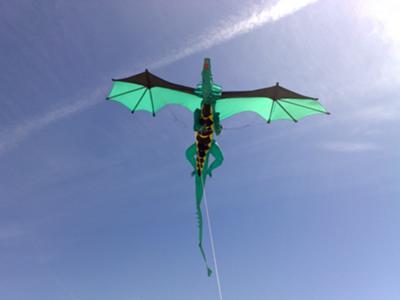 pipa middleton gallery flying of kites