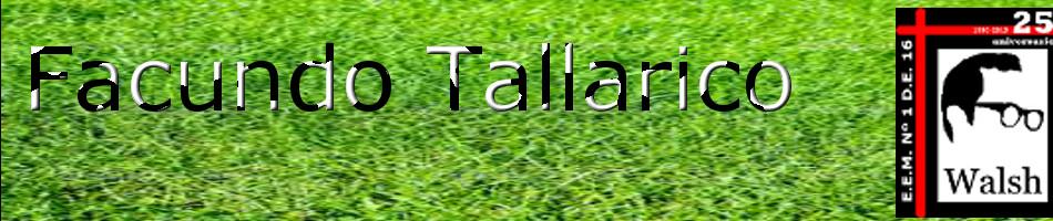 El blog de Facundo Tallarico