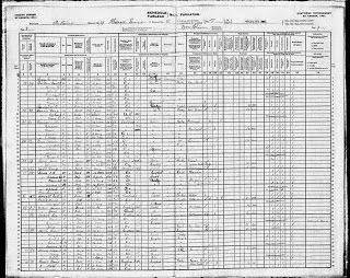 Ask Olive Tree Genealogy a Question: Clues You Can Find in a Census Record