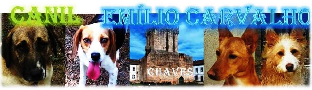 CANIL EMÍLIO CARVALHO