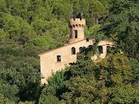 Torrella i façana de migdia del Castell de Fluvià