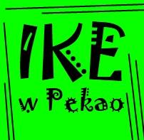 IKE Pioneer Pekao - opinie czy warto