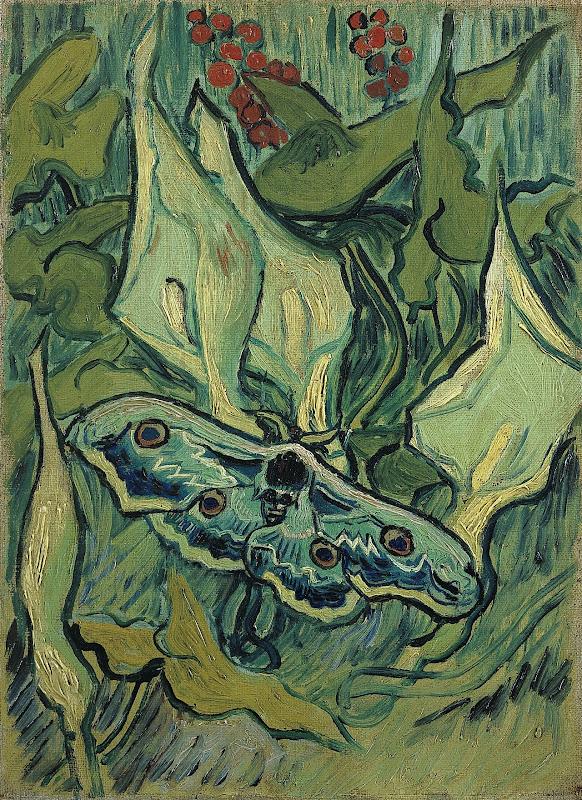 Vincent van Gogh - Natpåfugleøje - Emperor moth (1889)