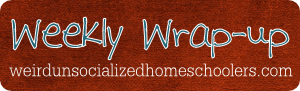 http://www.weirdunsocializedhomeschoolers.com/weekly-wrap-up-the-one-with-all-the-snow/