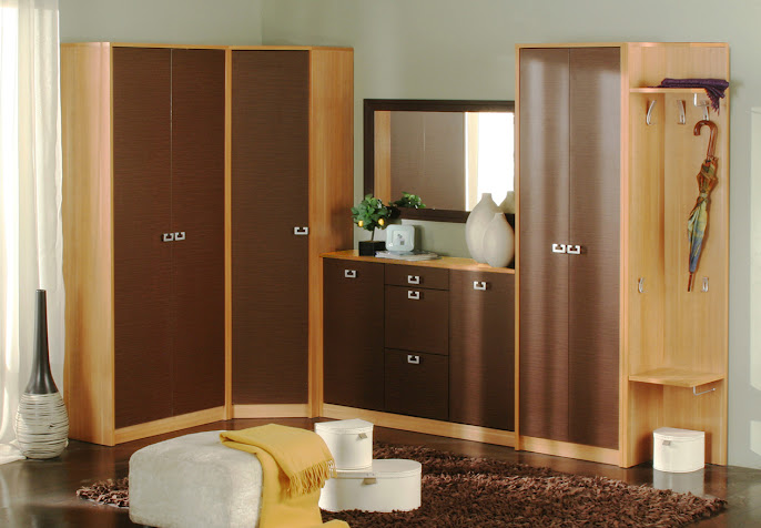 #10 Wardrobe Design Ideas