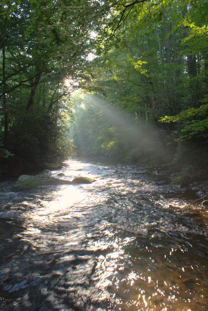 Morning rays on Cataloochee Creek