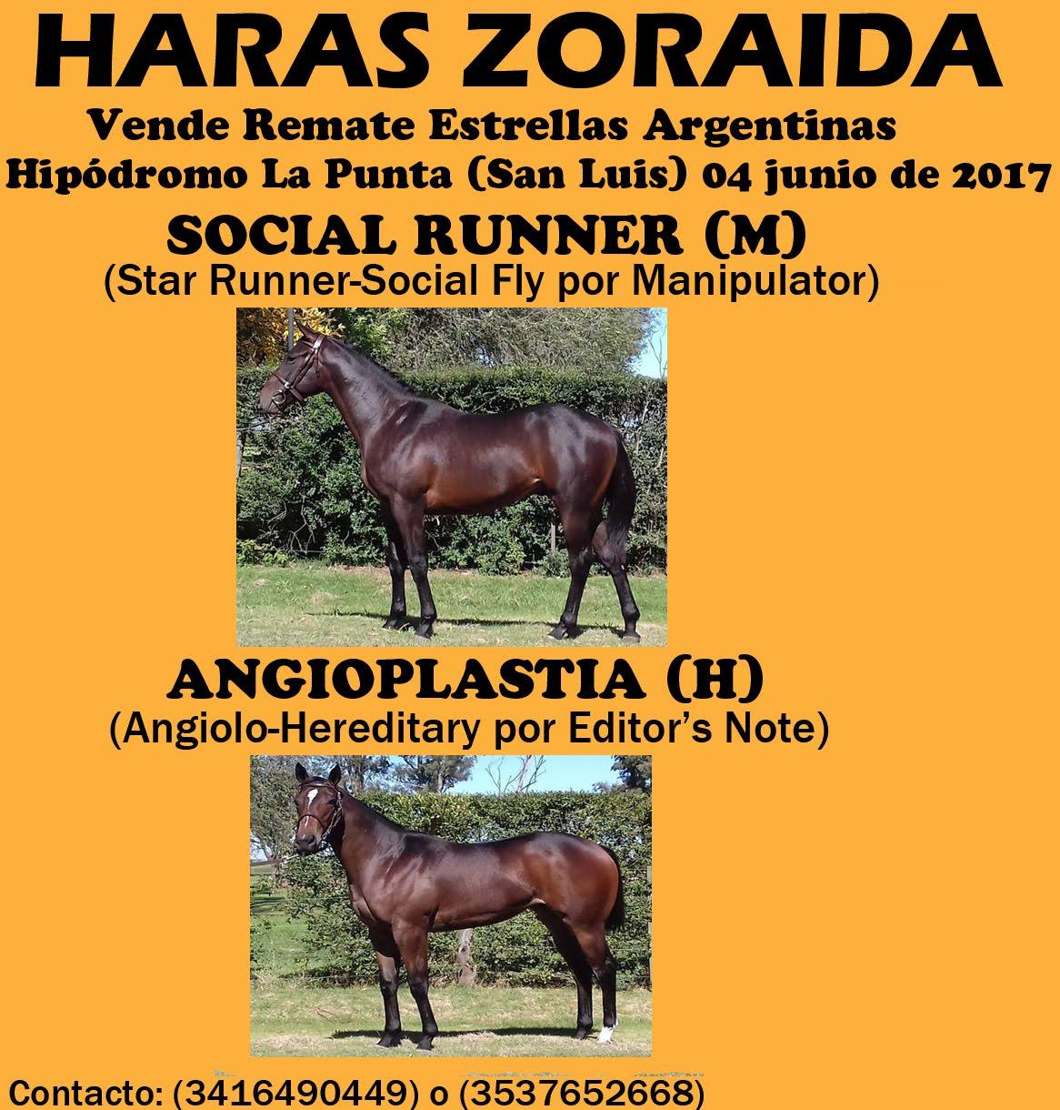 HS ZORAIDA REMATE LP