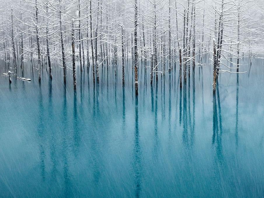 en g%C3%BCzel masa%C3%BCst%C3%BC resimler+%2822%29 2012 Yılının En Güzel Masaüstü Resimleri   Jenerik Fotoğraflar