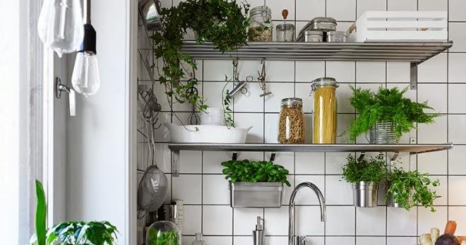 ma maison au naturel cultivez des plantes aromatiques dans votre cuisine. Black Bedroom Furniture Sets. Home Design Ideas