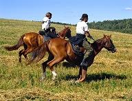 Equitación en plena naturaleza