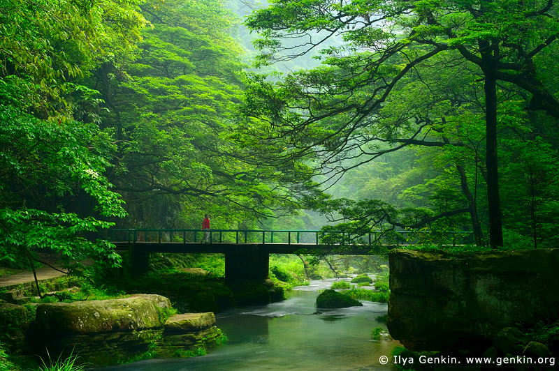 Chinese gardens bridge - Travel Trip Journey Zhangjiajie National Forest Park China