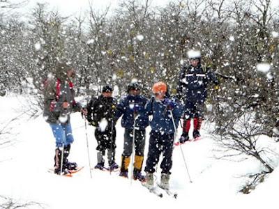 imagen invierno nieve