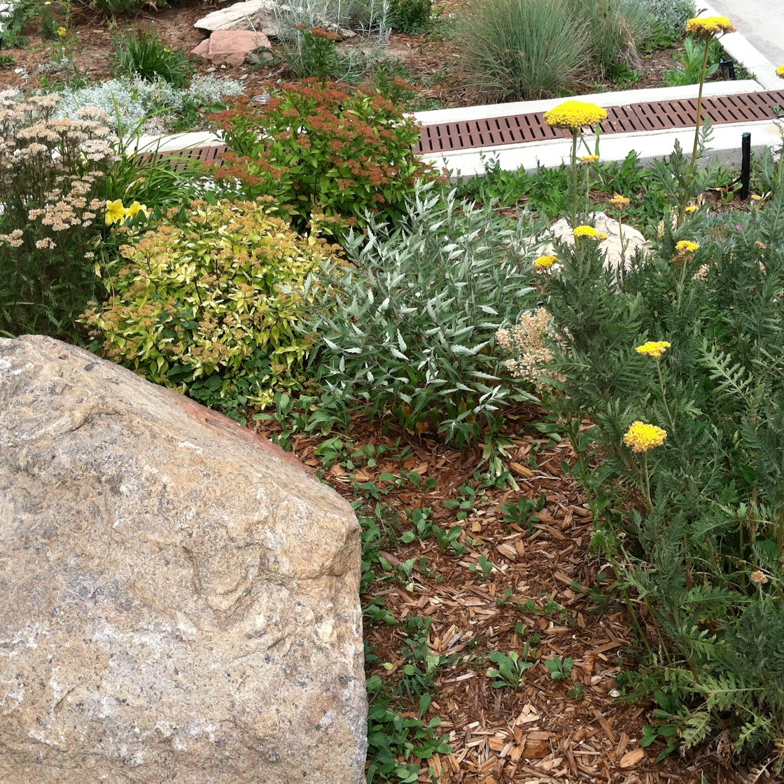 Garden Musings From Memphis Area Master Gardeners September 2015