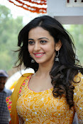 Rakul Preeth Singh at Pandaga Chesko Launch-thumbnail-3