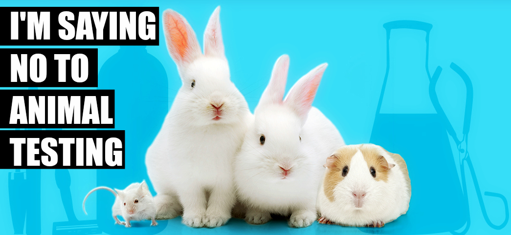 testing on animals vs animal rights Animals with human rights will be more than a pet as these animals inch closer to citizen's rights actually opposition to animal testing has been rising.