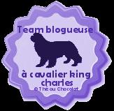 Je suis une blogueuse à chien!