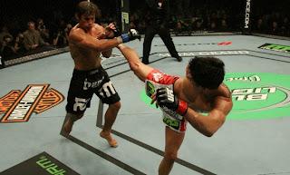 UFC 132 Dominick Cruz vence Urijah Faber