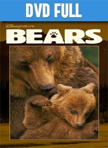 Bears DVD Full Español Latino 2014