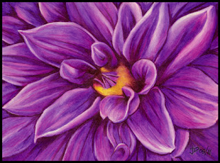 Purple Color Pencil Drawing of a Dahlia Flower artwork